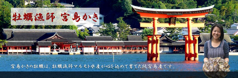 広島 | 宮島の美味しい牡蠣(かき)なら宮島の牡蠣漁師 – マルモト水産
